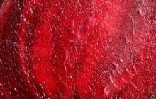 Rode-biet-klein-2
